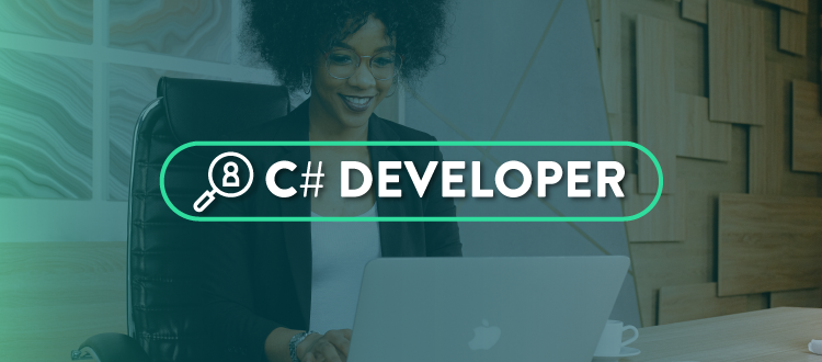 website vaga developer